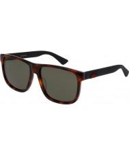 Gucci Mens gg0010s 006 aurinkolasit