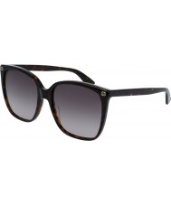 Gucci Hyvät gg0022s 003 aurinkolasit