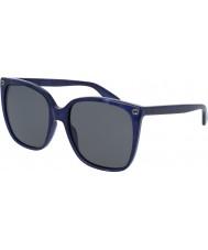 Gucci Hyvät gg0022s 005 aurinkolasit