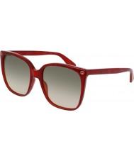 Gucci Hyvät gg0022s 006 aurinkolasit