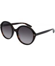 Gucci Hyvät gg0023s 002 aurinkolasit