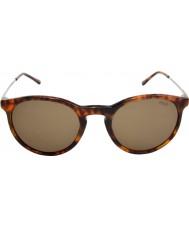 Polo Ralph Lauren Ph4096 50 klassinen tyyli Jerry Nokkosperhonen 501773 aurinkolasit
