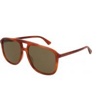 Gucci Miesten gg0262s 002 58 aurinkolasit