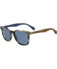 HUGO BOSS Mens Boss 0843-s IWF 9a sarvi ruskea sininen aurinkolasit