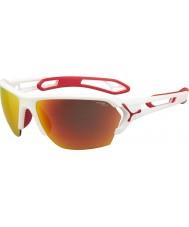 Cebe Cbstl11 s-raita valkoiset aurinkolasit