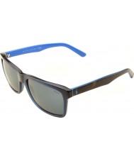 Polo Ralph Lauren Ph4098 57 rento olo läpinäkyvä sininen 556387 aurinkolasit