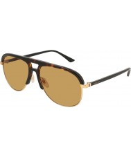 Gucci Mens gg0292s 004 60 aurinkolasit