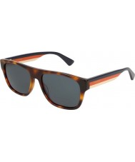 Gucci Miesten gg0341s 004 56 aurinkolasit
