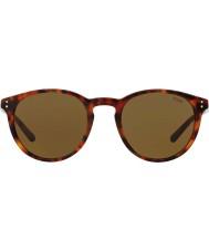 Polo Ralph Lauren Mens ph4110 50 501773 aurinkolasit
